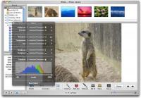 ابزارهای ویندوز و مک برای ویرایش تصاویر صفحات وبسایت